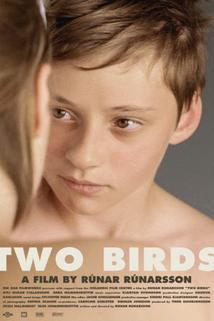 Ptáčata  - Smáfuglar