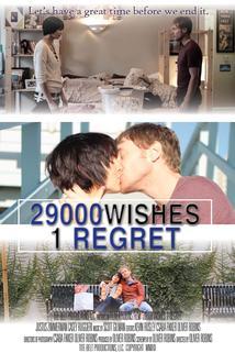 29000 Wishes. 1 Regret.