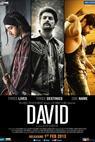 David (2013)