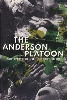 La section Anderson