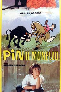 Pin il monello
