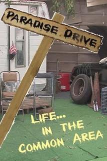 Paradise Drive  - Paradise Drive
