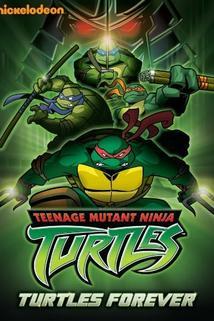 Turtles Forever  - Turtles Forever