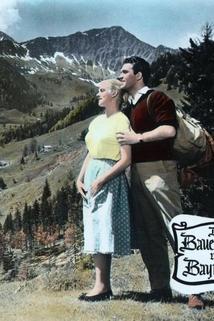 Der Bauerndoktor von Bayrischzell