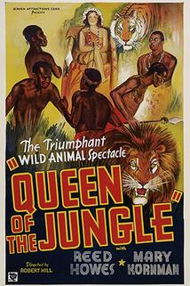 Queen of the Jungle  - Queen of the Jungle