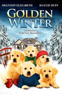 Golden Winter  - Golden Winter
