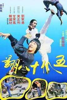 Wu zhao shi ba fan