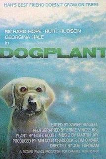 Dogplant