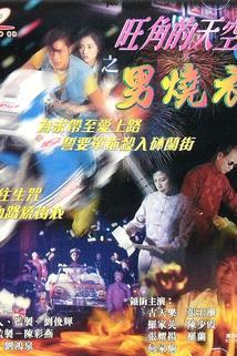 Wang Jiao de tian kong 2: Zhi nan shao yi
