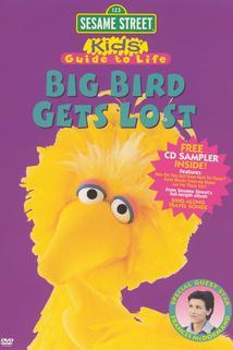 Big Bird Gets Lost  - Big Bird Gets Lost
