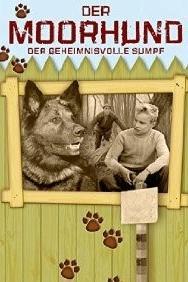 Der Moorhund