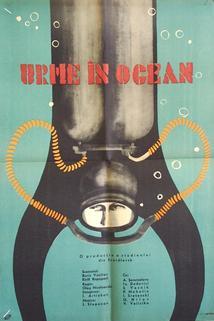 Sled v okeane