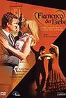 Flamenco der Liebe