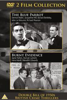 Burnt Evidence  - Burnt Evidence