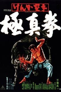 Kenka karate kyokushinken