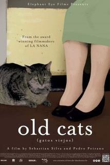 Staré kočky