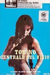 Torino centrale del vizio