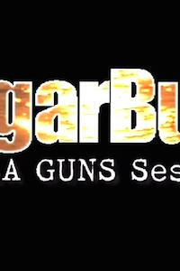 SugarBush: TheLA Guns Sessions
