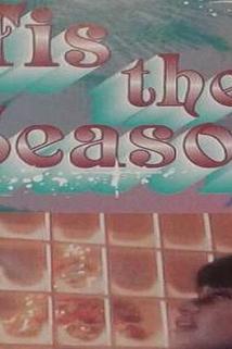 Tis the Season  - Tis the Season