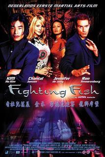 Fighting Fish  - Fighting Fish