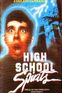 High School Spirits