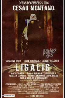 Ligalig