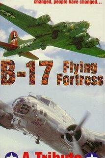B-17: The Flying Fortress