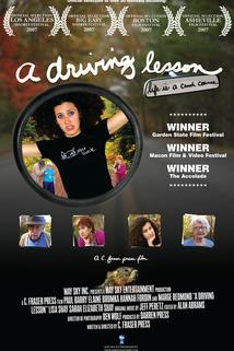 A Driving Lesson  - A Driving Lesson
