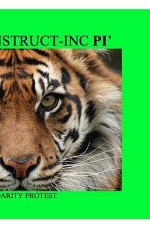 Deconstructing Pí