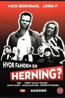 Hvor fanden er Herning?