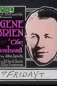 The Figurehead  - The Figurehead