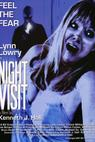 Night Visit (2007)