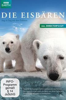 Polar Bears: Spy on the Ice