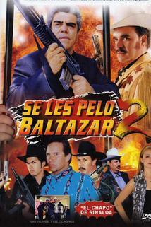 Se les pelo Baltazar 2