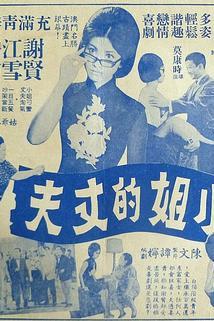 Xiaojie de zhangfu  - Xiaojie de zhangfu