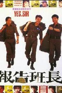 Bao gao ban zhang
