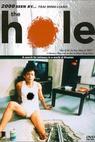 Dong (1998)
