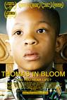 Thomas in Bloom