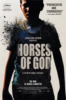 Plakát k filmu: Boží koně