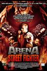 Arena of the Street Fighter (2012)