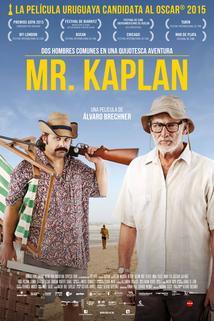 Mr. Kaplan