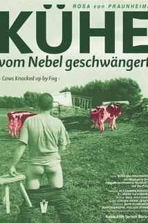 Kühe, vom Nebel geschwängert  - Kühe, vom Nebel geschwängert