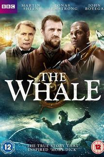 Whale, The