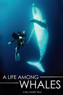 Life Among Whales, A