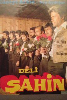 Deli Sahin