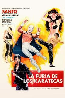 La furia de los karatecas