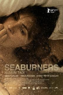 Seaburners