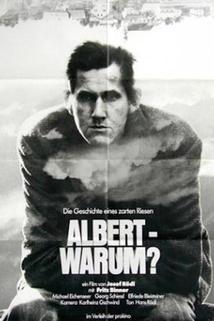 Albert - warum?