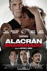 Alacrán enamorado (2013)