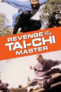Revenge of the Tai Chi Master